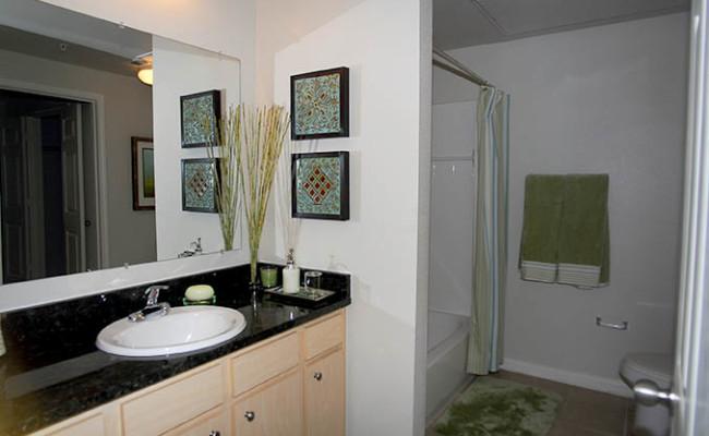 10-BL Model Bathroom 2 copy