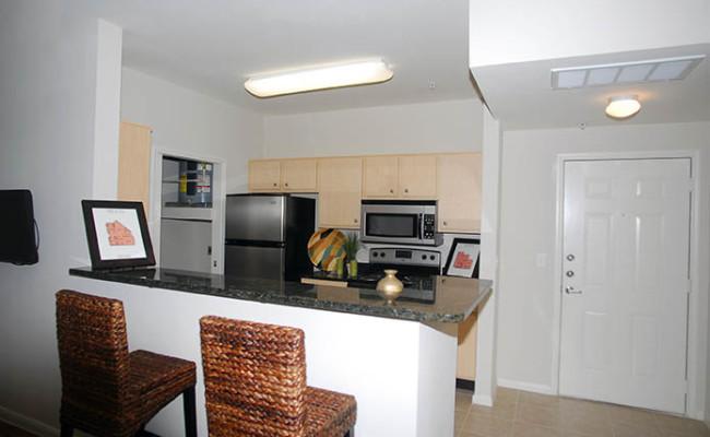 8-BL Model Kitchen 3 copy