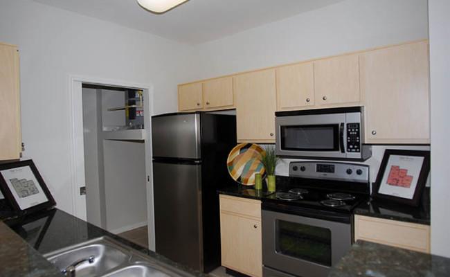 9-BL Model Kitchen